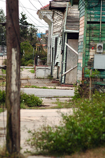 This view looks down the street from Nicole's front porch in 2006.