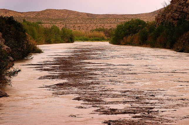 As we hiked Santa Elena Canyon, we noticed the Rio Grand suddenly started to show much more floating debris that before.