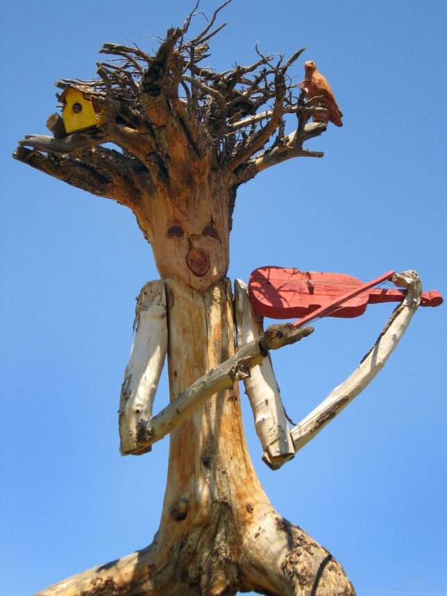 I spotted this unusual carving of a tree stump in southern Colorado.