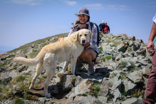 Several hikers brought their dogs up with them, and the dogs all seemed content with the climb. Maybe one day I could bring Hawken the Irish wolfhound along with me.